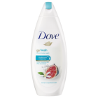 Dove Douche 250 ml Go Fresh Restore